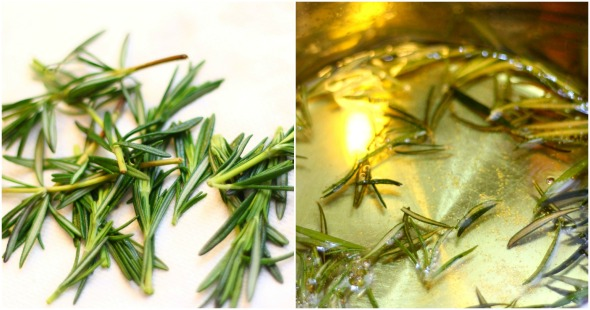 rosemary + infusing