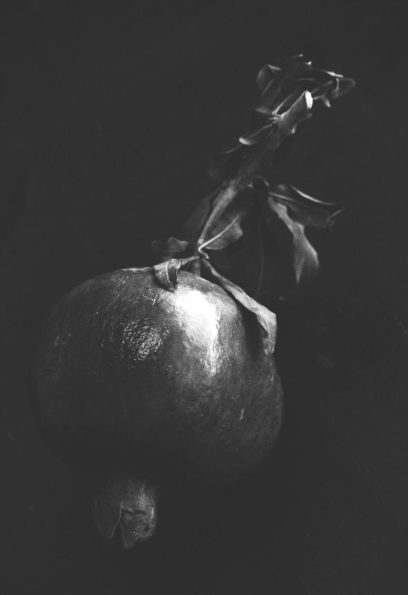 pomegranate b&w