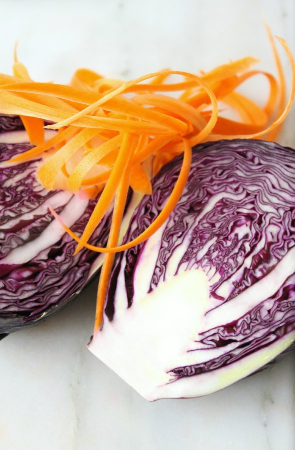 carrots + purple cabbage