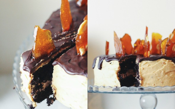 chocolate peanut butter crunch cake