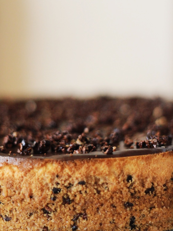 Cacao Nib Frangelico Cheesecake