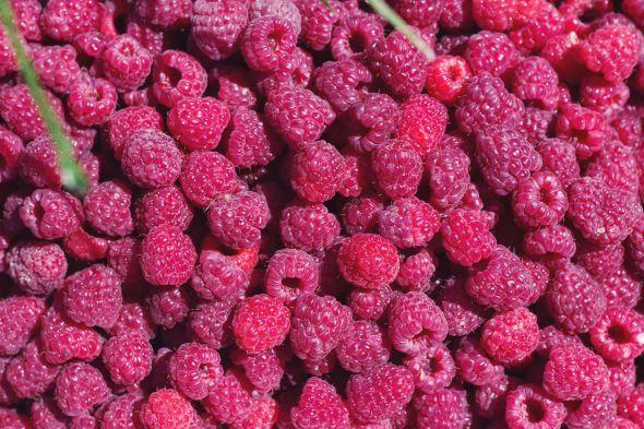 a flat of raspberries