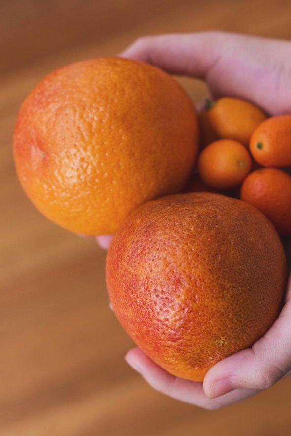 blood oranges + kumquats